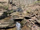 8977 Skitts Mountain Rd - Photo 15
