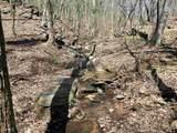 8977 Skitts Mountain Rd - Photo 16