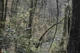 0 Oak Ridge - Photo 2