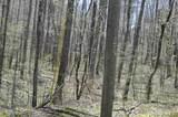 0 Oak Ridge - Photo 4