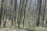 0 Oak Ridge - Photo 5