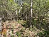 0 Triune Mill Rd - Photo 13