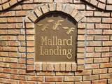 0 Mallard Ln - Photo 8