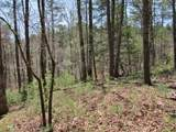 6 Tall Pines - Photo 10