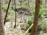6 Tall Pines - Photo 12