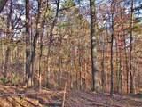 6 Tall Pines - Photo 6