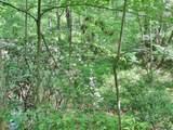 6 Tall Pines - Photo 8