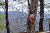 836 Cherry Lake - Photo 12