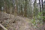 0 Hiawassee - Photo 3
