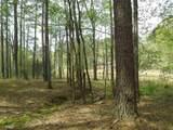 1140 Shadow Creek Way - Photo 10