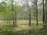 1140 Shadow Creek Way - Photo 8