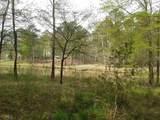 1140 Shadow Creek Way - Photo 9