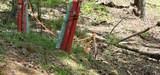 10 Arrow Mtn Dr - Photo 4