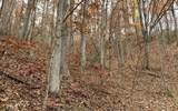 0 Woods Of Hunter - Photo 14