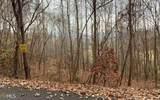 0 Woods Of Hunter - Photo 17