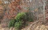 0 Woods Of Hunter - Photo 20