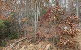 0 Woods Of Hunter - Photo 21