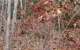 0 Woods Of Hunter - Photo 22