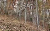 0 Woods Of Hunter - Photo 6