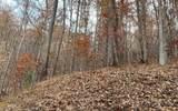 0 Woods Of Hunter - Photo 7