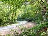 0 Highway 197 - Photo 3
