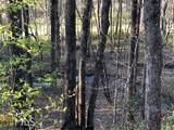 0 Crippled Oak Trl - Photo 4