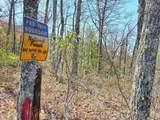 3015 Jump Off Ridge - Photo 2