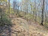 3015 Jump Off Ridge - Photo 3