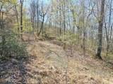 3015 Jump Off Ridge - Photo 8