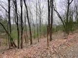 0 L Walnut Mountain - Photo 7
