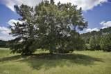548 Chestnut Rd - Photo 3