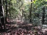 21 Soque Wilderness Rd - Photo 15