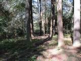 21 Soque Wilderness Rd - Photo 18