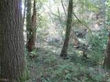 21 Soque Wilderness Rd - Photo 19