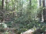 21 Soque Wilderness Rd - Photo 20