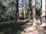 21 Soque Wilderness Road - Photo 21