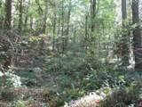 21 Soque Wilderness Road - Photo 23