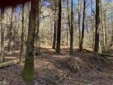 21 Soque Wilderness Rd - Photo 5