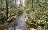 0 Jack's River - Photo 11