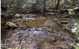 0 Jack's River - Photo 17