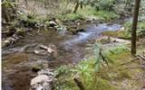 0 Jack's River - Photo 21