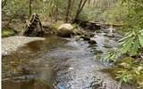 0 Jack's River - Photo 23