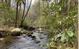 0 Jack's River - Photo 24