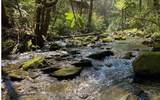 0 Jack's River - Photo 30