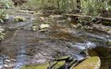 0 Jack's River - Photo 31