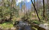0 Jack's River - Photo 32