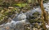 0 Jack's River - Photo 36