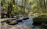 0 Jack's River - Photo 4