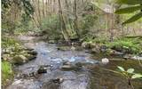 0 Jack's River - Photo 45