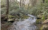 0 Jack's River - Photo 46